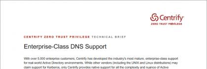 technical-enterprise-class-dns-support